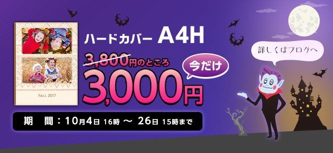 ハードカバーA4H今だけ3000円